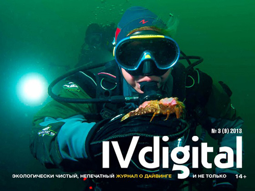 IV_Digital_2013-3-cover